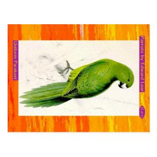 Edward Lear. Uniform Parakeet. Postcard