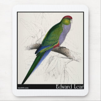 Edward Lear's Red-Capped Parakeet Female Mouse Pad