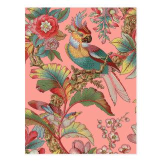 Edwardian Parrot ~ Duchess Postcard