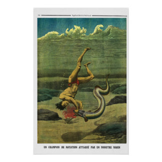 Eel attack - 1913 French newspaper print