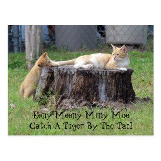 Eeny Meeny Miney Moe ... Postcard
