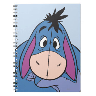 Eeyore 10 spiral notebook