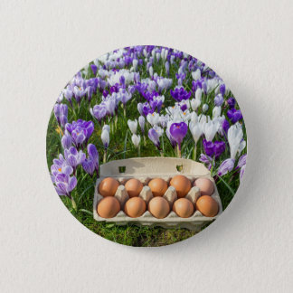 Egg box with chicken eggs in crocuses 2 inch round button