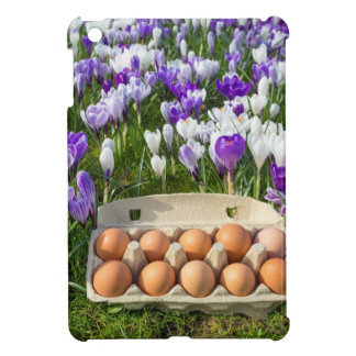 Egg box with chicken eggs in crocuses iPad mini case