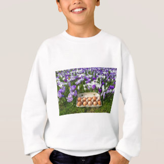 Egg box with chicken eggs in crocuses sweatshirt