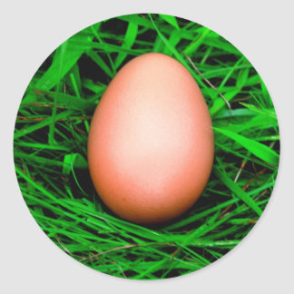 Egg Classic Round Sticker