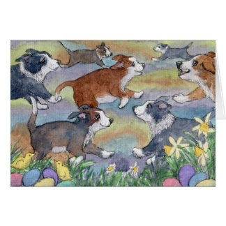 Egg Hunting Dogs, Border Collie Card