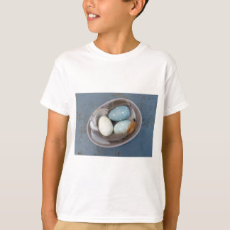 Eggs and feathers T-Shirt