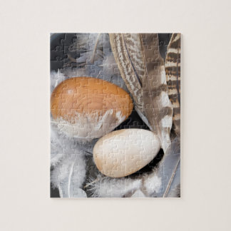 Eggs & feathers jigsaw puzzle