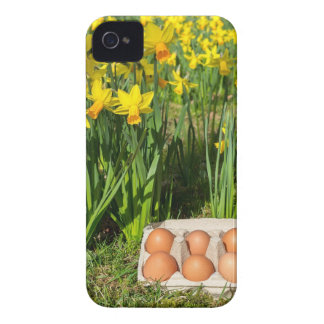 Eggs in box on grass with yellow daffodils iPhone 4 Case-Mate case
