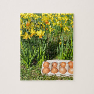 Eggs in box on grass with yellow daffodils jigsaw puzzle