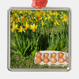 Eggs in box on grass with yellow daffodils Silver-Colored square ornament
