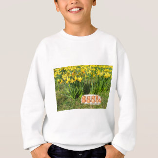 Eggs in box on grass with yellow daffodils sweatshirt
