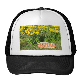 Eggs in box on grass with yellow daffodils trucker hat