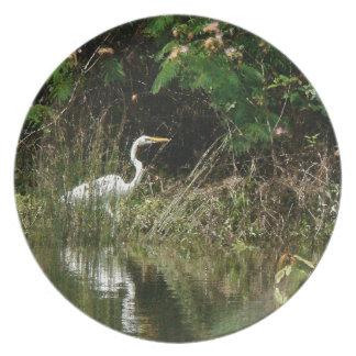 Egret Birds Wildlife Animal Photography Dinner Plate