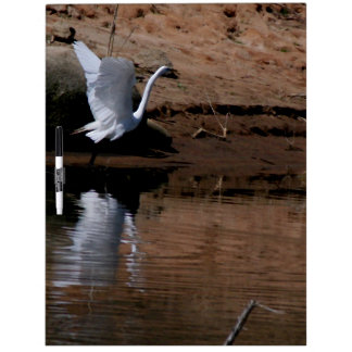 Egret Birds Wildlife Animal Photography Dry Erase Boards