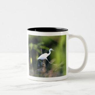 Egret-Go-Lightly Two-Tone Coffee Mug