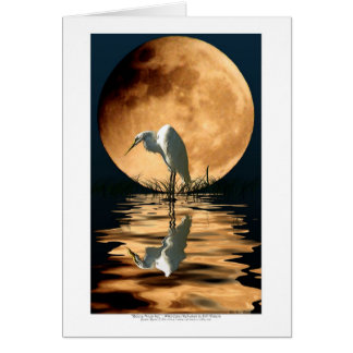 EGRET & GOLDEN MOON ~ Greeting-cards & Note Cards