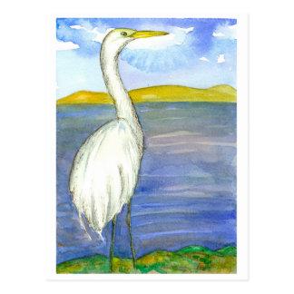 Egret Lake Shore Bird Watercolor Painting Postcard