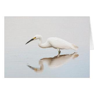 Egret on still pond card