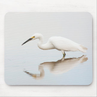 Egret on still pond mouse pad