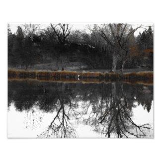 "Egret on ""Walden"" I Photo Print"