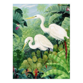 Egret Pair Postcard