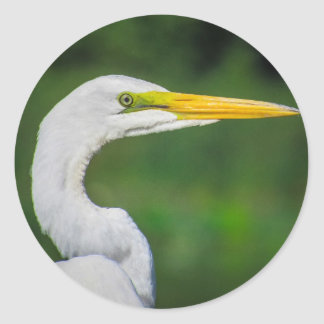 Egret Round Sticker