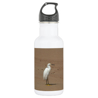Egrets Loitering on Beach