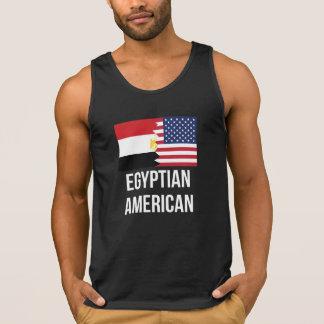 Egyptian American Flag