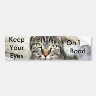 Egyptian Cat Bumper Sticker