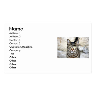 Egyptian Cat Business Card