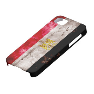 Egyptian Flag iPhone 5 Covers
