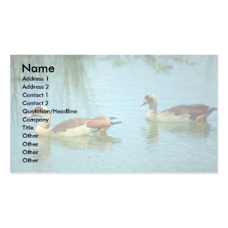 Egyptian Geese Business Card Templates