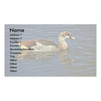 Egyptian Goose Business Card Templates