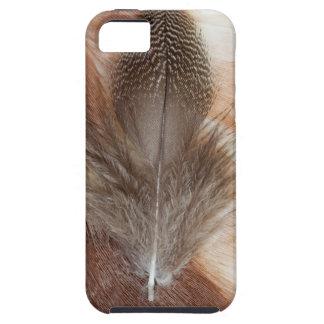 Egyptian Goose Feather Still Life iPhone 5 Covers