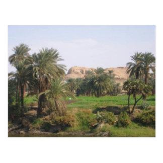 Egyptian Landscape Postcard