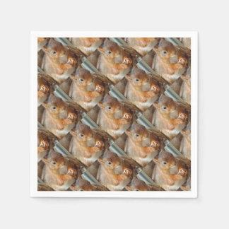 eichySquirrel ~ Écureuil ~ squirrels Paper Napkin