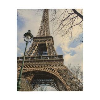 Eiffel Tower in Spring Wood Wall Art