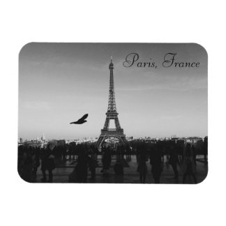 Eiffel Tower, Paris, France Magnet