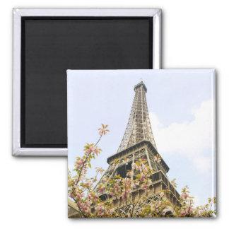 Eiffel Tower, Paris Magnet