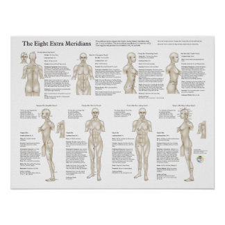 Eight Extraordinary Acupuncture Meridians Poster