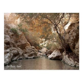 Ein Bokek, Israel. Postcard