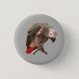 Einstein Parrot Waving 1 Inch Round Button
