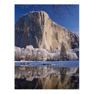 El Capitan reflects into the Merced River in 2 Postcard
