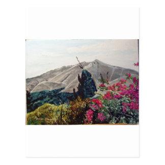 El Valle ,Panama WaterColor Postcard