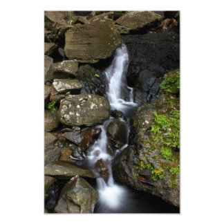 El Yunque Puerto Rico Photo Print