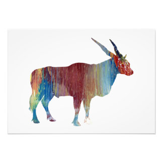 Eland antelope photo print
