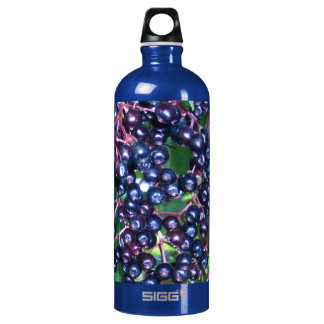 Elder SIGG water bottle