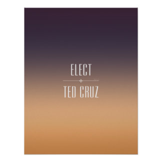 Elect Ted Cruz Poster